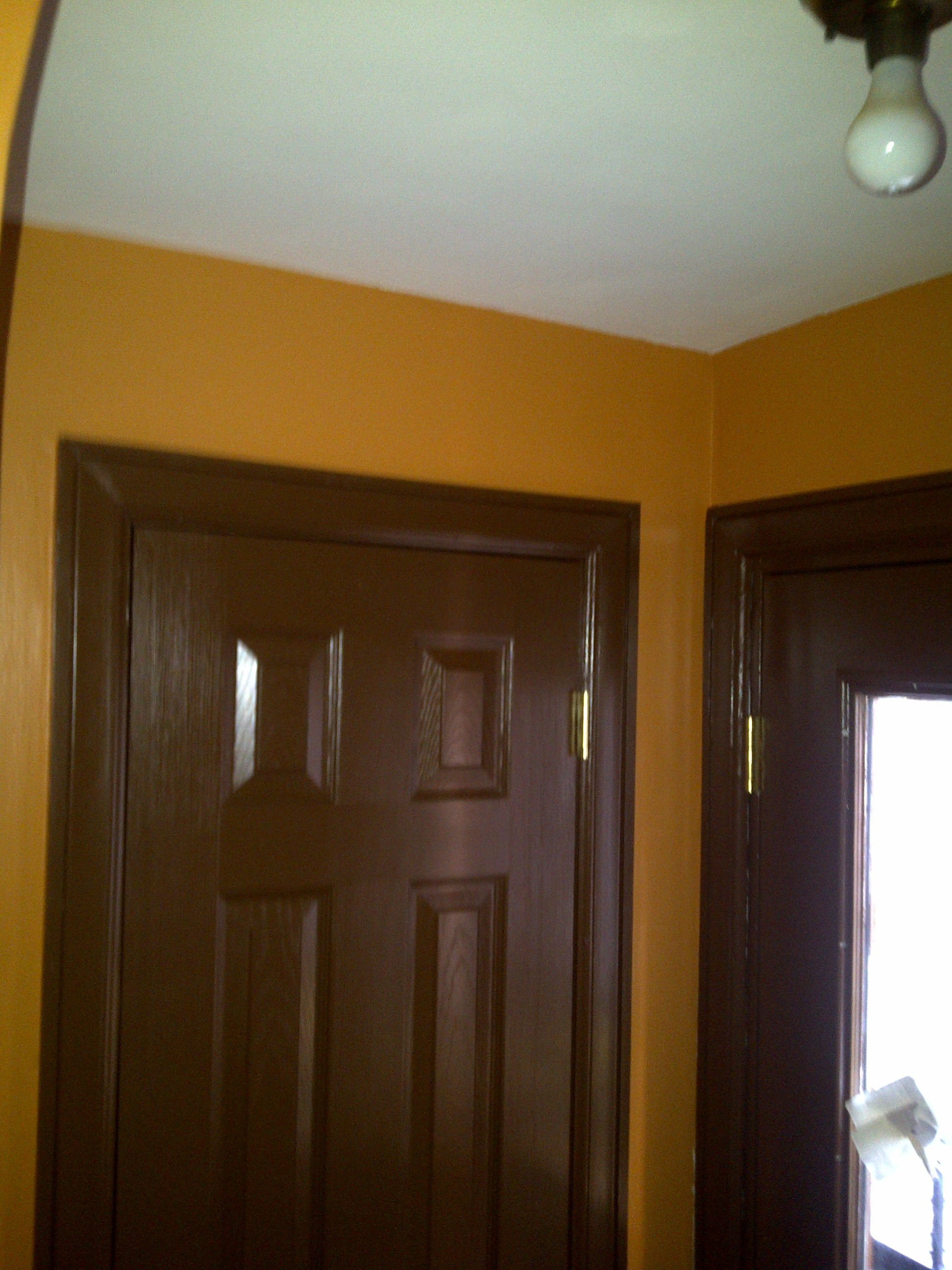 doors and paint